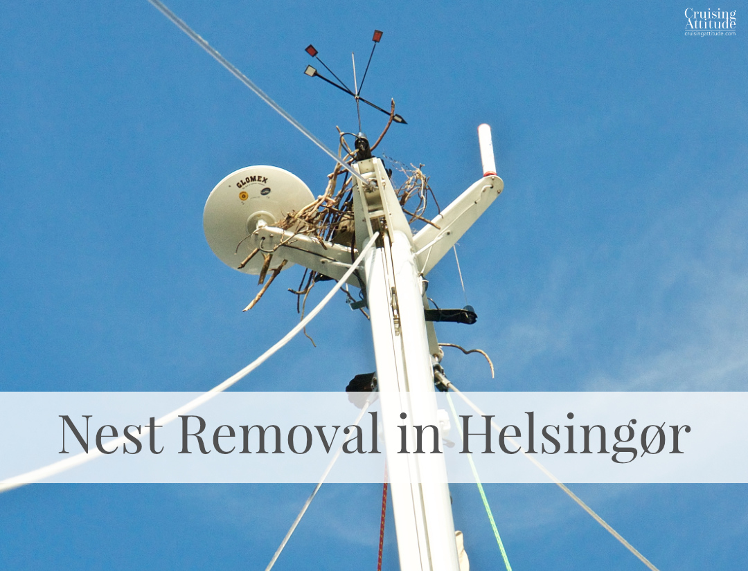 Removing a bird's nest from the top of the mast | Cruising Attitude Sailing Blog - Discovery 55