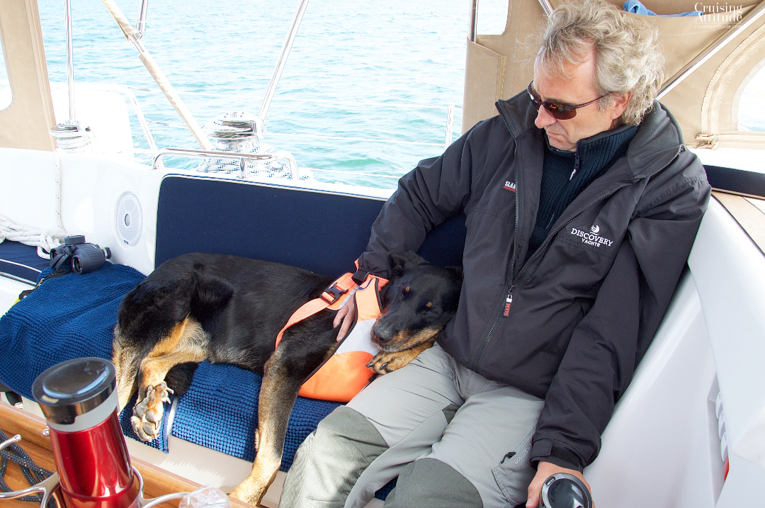 Boat dog - Senna sleeps during the sail to Møn | Cruising Attitude Sailing Blog - Discovery 55