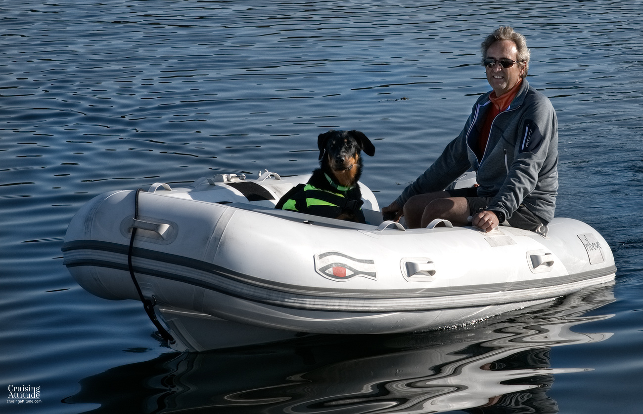 Sailing with dogs | Cruising Attitude Sailing Blog | Discovery 55