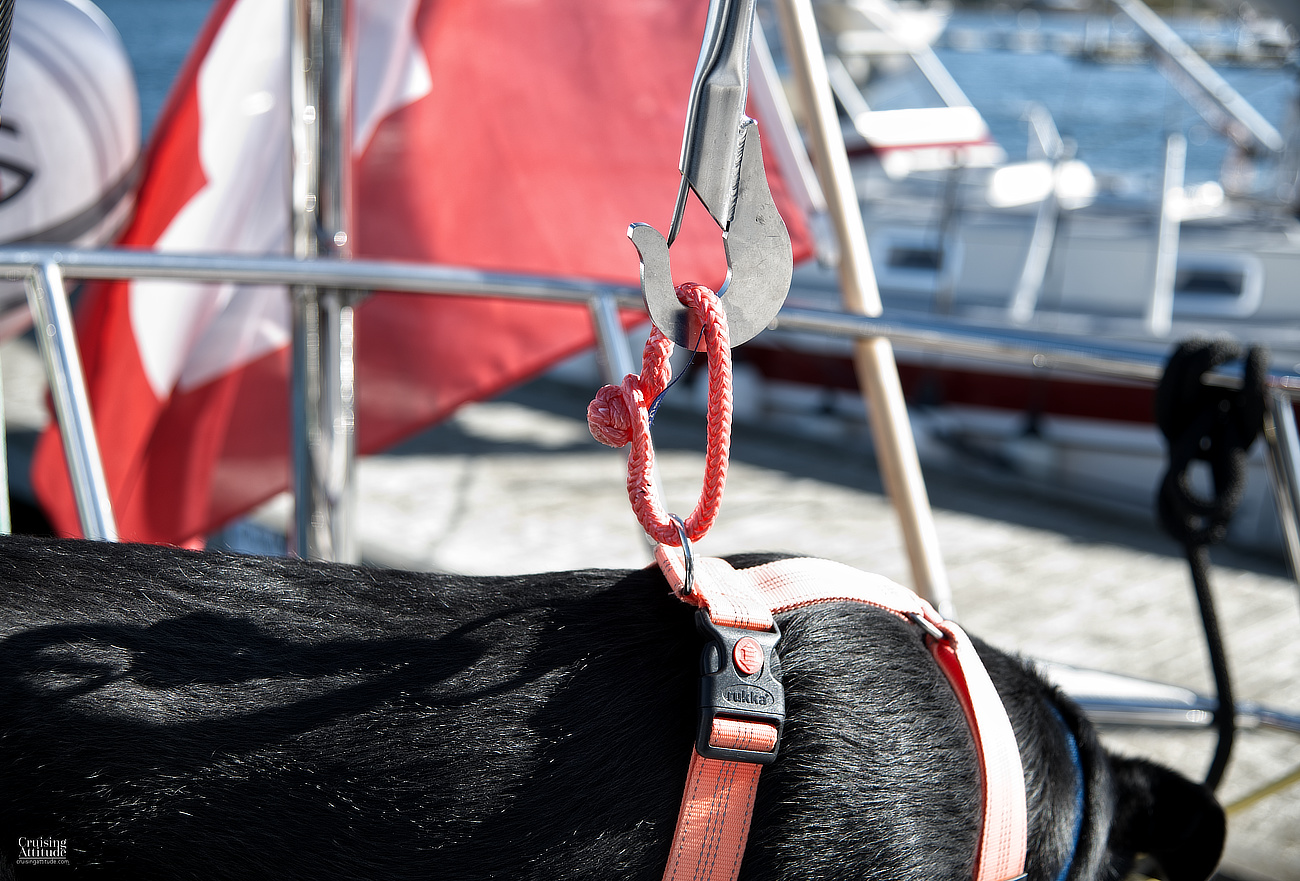 Buoy hook dog over board system | Cruising Attitude Sailing Blog | Discovery 55
