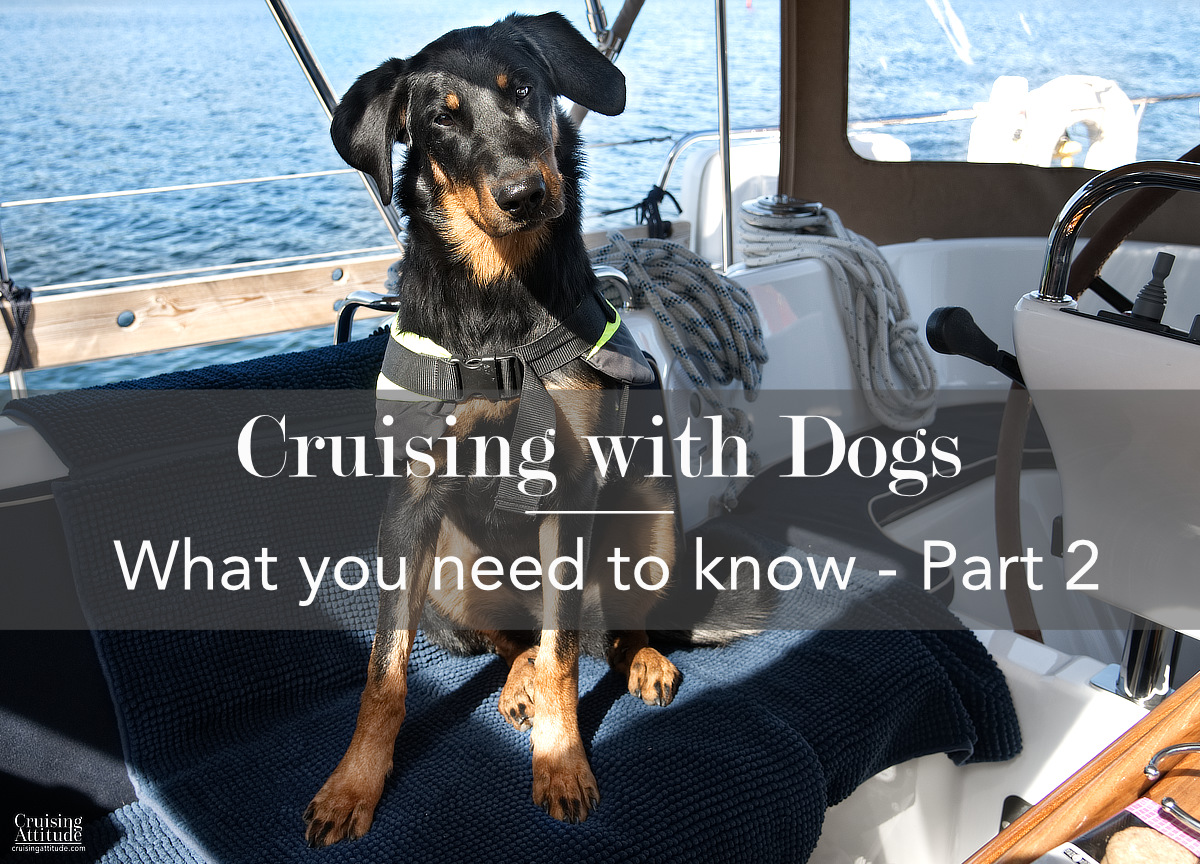 Sailing with dogs - what you need to know - Part 2 | Cruising Attitude Sailing Blog | Discovery 55